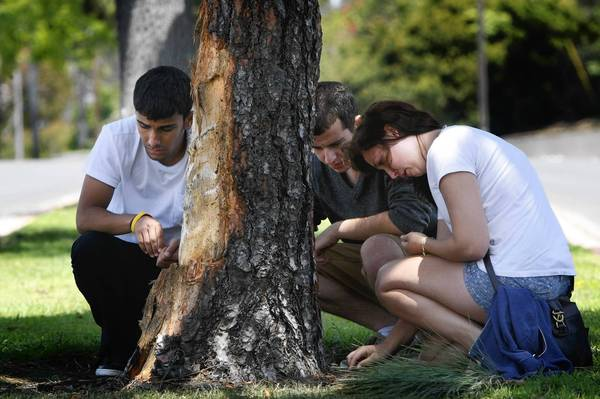 Students mourn the deaths of their friends...